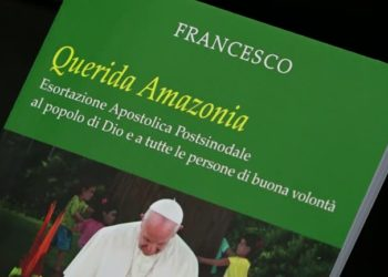 3084WD-POPE-AMAZON_